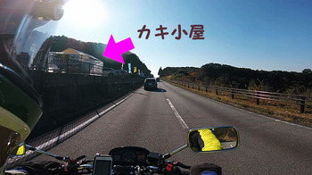 GP010159-0001-s.jpg